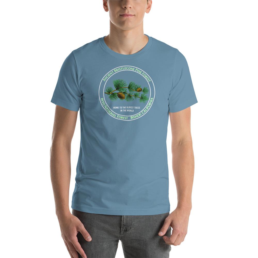unisex-staple-t-shirt-steel-blue-front-610975bf49e92.jpg